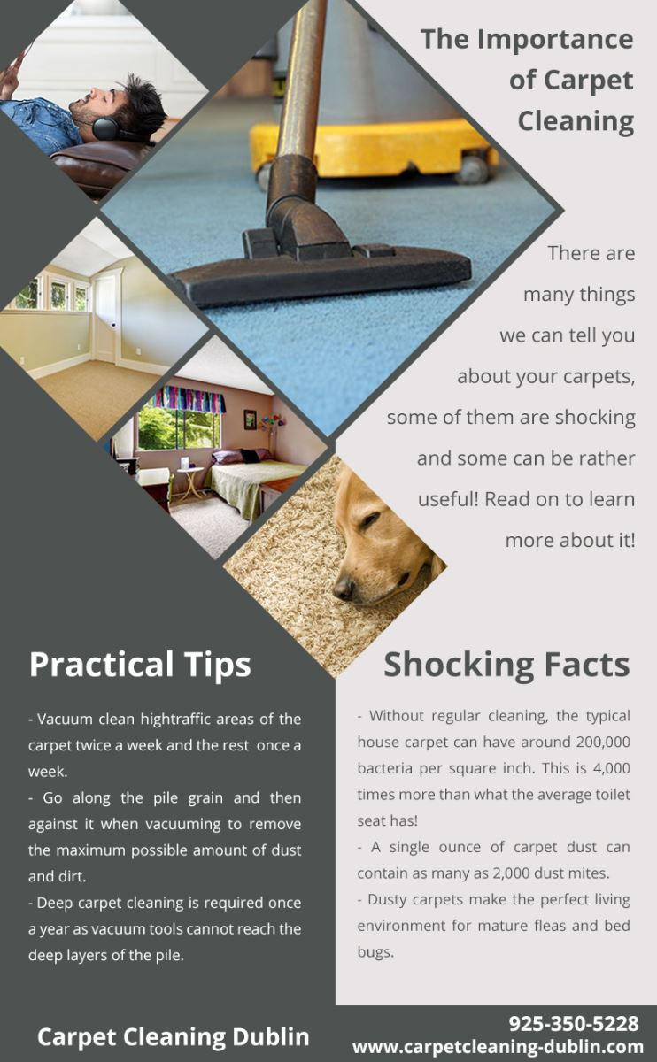 Carpet Cleaning Dublin Infographic